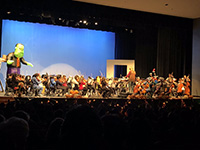 picture of music concert